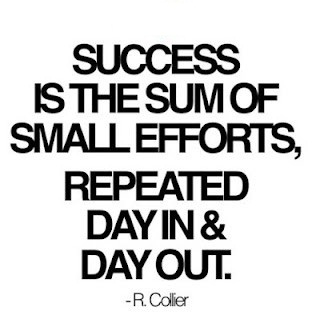 success-is-the-sum-of-small-efforts-repeated-day-in-and-day-out29
